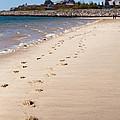 Chatham Beach Stroll by Lisa Cranshaw