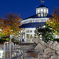 Chattanooga Park At Night by Melinda Fawver