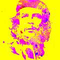 Che Guevara 2a by Brian Reaves
