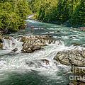 Cheakamus River by Sharon Talson
