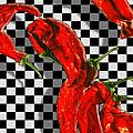 Checker Peppers by Paul Wear