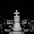 Checkmate by Tsvetan Babechki
