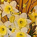 Cheerful Warmth Of Spring by Byron Varvarigos