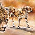 Cheetahs by Samantha Anne Hutchinson