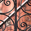 Chelsea Wrought Iron Abstract by Rona Black