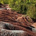 Mars On Earth - Cheltenham Badlands Ontario Canada by Georgia Mizuleva