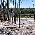 Chemical Lake In Yellowstone by Brenda Kean