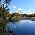 Chena River by Dee Carpenter