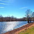 Cheniere Lake West Monroe by Ester  Rogers
