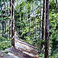 Cheraw Trail by Mary McCullah