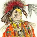 Cherokee In Orange by Lew Davis