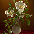 Cherokee Roses In A Glass Vase C1883-1888 by Sheila Savage