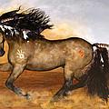 Cherokee by Valerie Anne Kelly