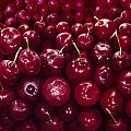 Cherries by Patricia Devitt