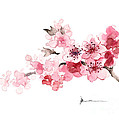 Cherry Blossom Branch Watercolor Art Print Painting by Joanna Szmerdt