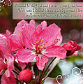 Cherry Blossom Greeting Card With Verse by Debbie Portwood
