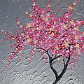 Cherry Blossom In Pink by Cathy Jacobs