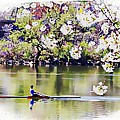 Cherry Blossom Rower by Alice Gipson