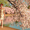 Cherry Blossoms 2013 - 080 by Metro DC Photography