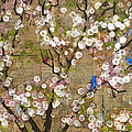 Cherry Blossoms And Blue Birds by Blenda Studio