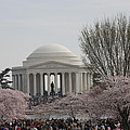 Cherry Blossoms With Jefferson Memorial - Washington Dc - 01132 by DC Photographer