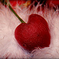Cherry Heart by Linda Sannuti
