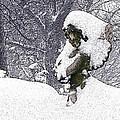 Cherub Of The Blizzard by Teak  Bird