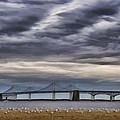 Chesapeake Bay Bridge by Erika Fawcett