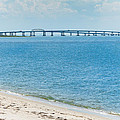Chesapeake Bay by Frank White