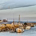 Chesapeake Fishing Boats by Bill Cannon