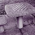 Chess Anyone by Howard Markel
