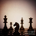 Chess by Amanda Elwell