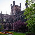 Chester Cathedral by Mark Llewellyn