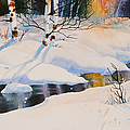 Chester Creek Shadows by Teresa Ascone