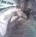 Chetak by Sumit Rana