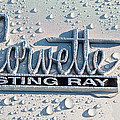 1966 Chevrolet Corvette Sting Ray Emblem -0052c by Jill Reger
