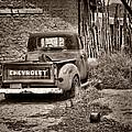Chevrolet Pickup - Sepia by Nikolyn McDonald