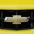 Chevy Camero Emblem 01 by Thomas Woolworth