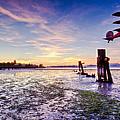 Chevy's Sunset by Andy Frasheski