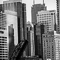 Chi Town  Sun Times Bw by Toma Caul