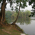 Chiang Mai University Lake by Brian Gilna
