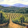 Chianti Vines by Michael Swanson