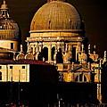 Chiaroscuro Venice by Ira Shander