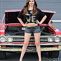 Chic Chevelle by Mark Spearman