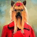 Chic Yorkshire Terrier by Jai Johnson