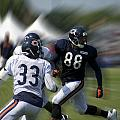 Chicago Bears Te Dante Rosario Training Camp 2014 03 by Thomas Woolworth