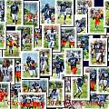 Chicago Bears Training Camp 2014 Collage Pa 01 by Thomas Woolworth