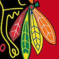 Chicago Blackhawks 2 by Tony Rubino