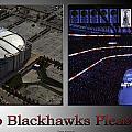 Chicago Blackhawks Please Stand 2 Panel Sb by Thomas Woolworth