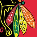 Chicago Blackhawks by Tony Rubino